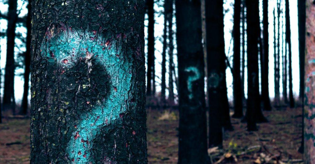 Fregezeichen Baum Darmprobleme - Platon Kiriazidis