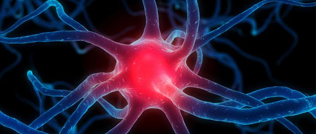 Impuls der Nerven - Platon Kiriazidis